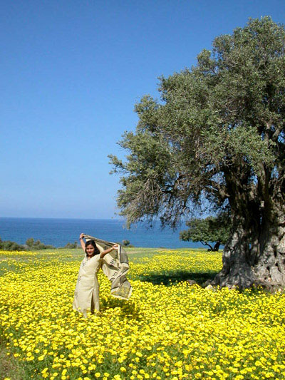 Spring in Cyprus
